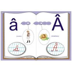 Literele alfabetului de mana