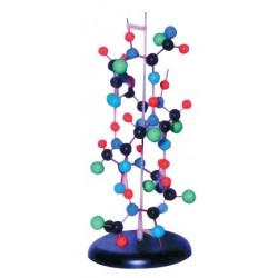 Structura proteinei secundare