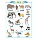 Plansa La Zoo