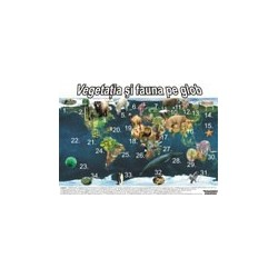 Planse Vegetatia si animalele planetei Pamant