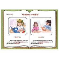 Plansa Numarul verbului