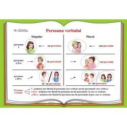 Plansa Persoana verbului