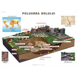 Poluarea solului si eroziunea. Consecinte