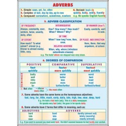 Adverbs / Modal verbs