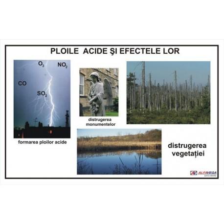 Ploile acide si efectele lor
