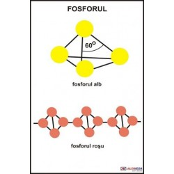 Fosforul
