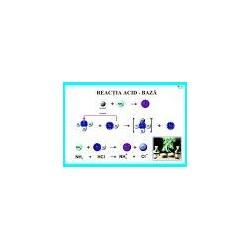 Reactia acid-baza