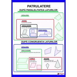 Patrulatere