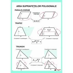 Aria suprafetelor poligonale