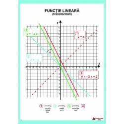 Functia lineara