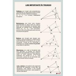 Linii importante in triunghi