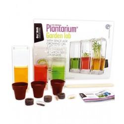 Plantarium – acvariu pentru plante