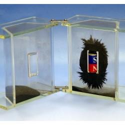 Dispozitiv pentru spectrul magnetic tridimensional