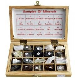 Trusa Minerale
