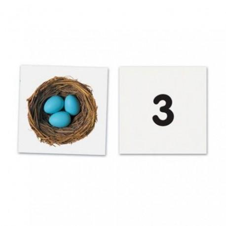 Carduri magnetice cu numere