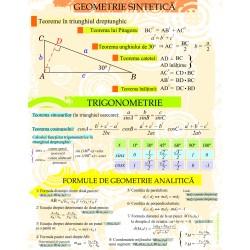 Geometrie sintetica, analitica, trigonometrie