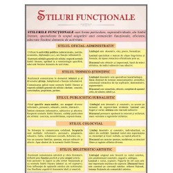 Stiluri functionale