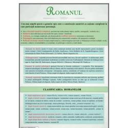 Romanul. Clasificare