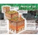 Profiluri de sol