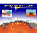 Dinamica placilor tectonice