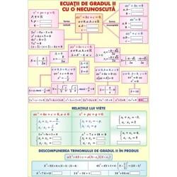 Functii de gradul II cu o necunoscuta / Transformari geometrice