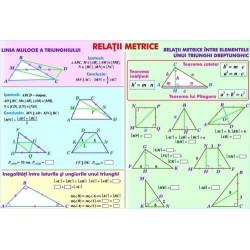 Relatii metrice / Sisteme si totalitati de ecuatii