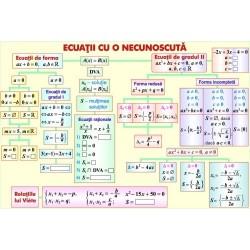 Ecuatii cu o necunoscuta / Prisma