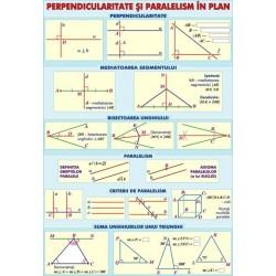 Perpendicularitate si paralelism / Puteri si radicali
