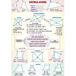 Patrulatere/Functii de gradul II