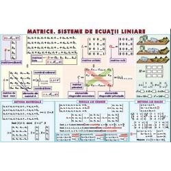 Matrice. Sisteme de ecuatii liniare/ Sfera inscrisa in corpurile