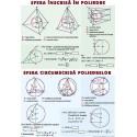 Sfera inscrisa in poliedre. Sfera circumscrisa poliedrelor / Functii trigonometrice