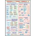 Verbul (2)  Modurile si timpurile / Mijloace de imbogatire a vocabularului
