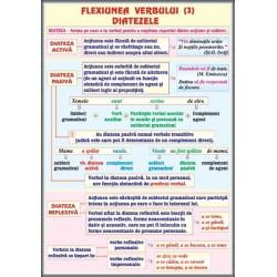 Verbul (3) Flexiunea.Diatezele / Mijloace interne de imbogatire a vocabularului