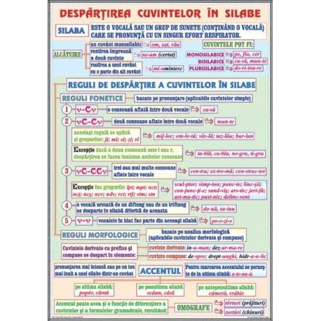 Fonetica (2). Despartirea cuvintelor in silabe /Complementele ci