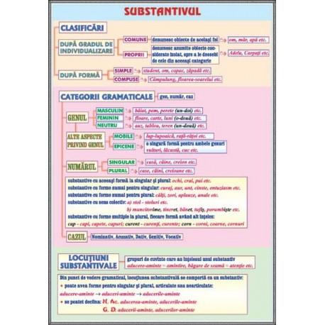 Substantivul /Cazurile substantivului