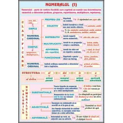 Numeralul (1) /Pronumele (1)