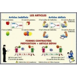 Les articles Formes contractees. Preposition + Article defini