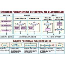 Structuri fundamentale de control ale algoritmilor/ Sisteme de n