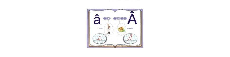 Planse Educarea limbajului
