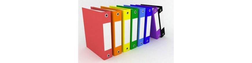 Organizare scolara