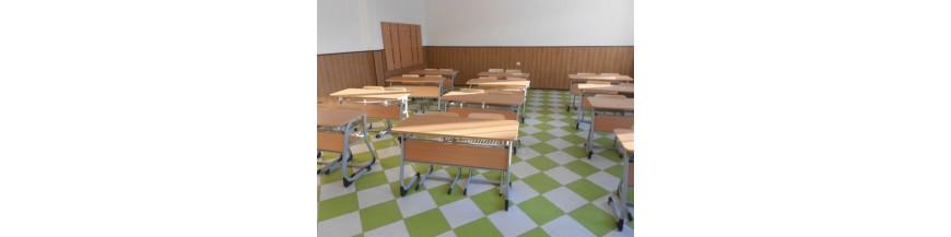 Mobilier scolar dublu pentru liceu (set)